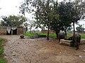Kotli Noonan, Pakistan - panoramio (9).jpg
