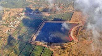 Molokai coffee - Moloka'i Coffee plantation from the air