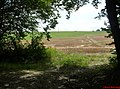 L'Orée du bois - panoramio.jpg