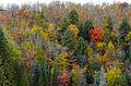 L'automne au Québec (8072422933).jpg