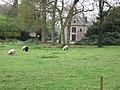 Landgoed Tongeren (30999460095).jpg