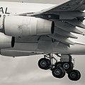 Landing in Tminus 4 seconds (14022829031).jpg