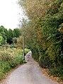 Lane from Greensforge Lane to Gothersley Bridge - geograph.org.uk - 1624171.jpg