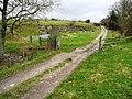 Lane towards Aberedw Hill - geograph.org.uk - 694032.jpg