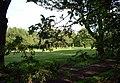 Langley Park Golf Club - geograph.org.uk - 34667.jpg
