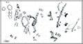Lapa do Santo - Grafismos - Piso picoteado.jpg