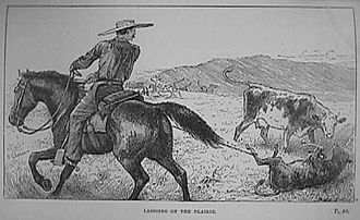 Lasso - Lassoing on the prairie (from the book Prairie Experiences in Handling Cattle and Sheep, by Major W. Shepherd, 1884)