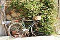Le vélo et l'abattoir.jpg