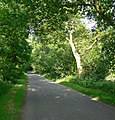 Lea Lane, Leicestershire - geograph.org.uk - 462141.jpg