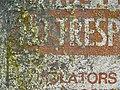 Lichen-Ravaged Sign (910650714).jpg
