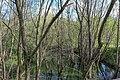 Likova river.jpg