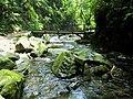 Linmei Shipan Trail 林美石磐步道 - panoramio.jpg