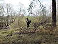 Lipetsky District, Lipetsk Oblast, Russia - panoramio (6).jpg