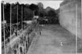 Lo Sferisterio delle Cascine - 1929.png