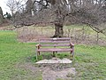 Long shot of the bench (OpenBenches 5140-1).jpg