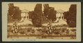 Main Gate, interior view at Shaw's Garden, St. Louis, Mo, from Robert N. Dennis collection of stereoscopic views.png