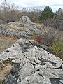 Malden Pinnacle Rock 9509 20190430.jpg