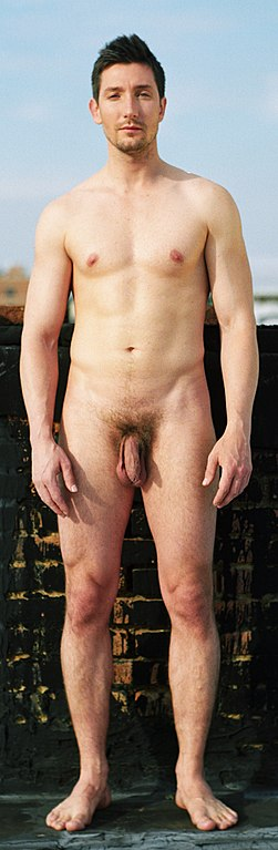 uncut gay dick