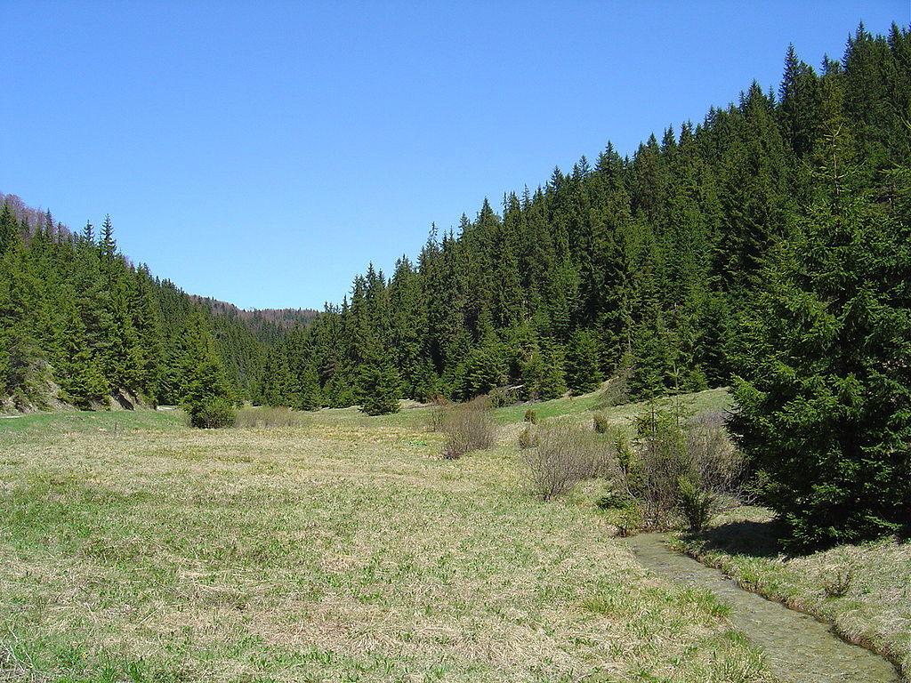Les ako súčasť krajiny