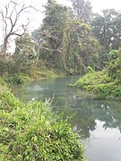 Manas Wildlife Sanctuary-119494.jpg