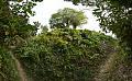 Manasa Mound - Western View - Manasapota - Simurali 2016-12-18 2174-2203.tif