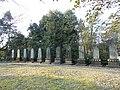 Manbutō eleven tower-shaped monuments in Saga.JPG