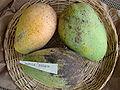 Mango DuPuisSaigon Asit fs8.jpg