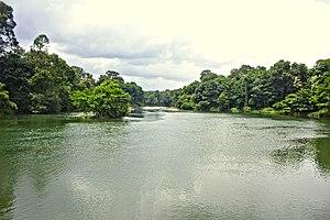 Manimala River - Image: Manimalayar river @ Pazhayidam