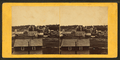 Marquette, Michigan (houses), from Robert N. Dennis collection of stereoscopic views.png