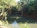 Mata Atlantica Vila Americana- Meeting of Rivers Tatui and Sorocaba -SP - panoramio (4).jpg