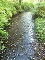 McSorley Creek - Saltwater State Park.jpg