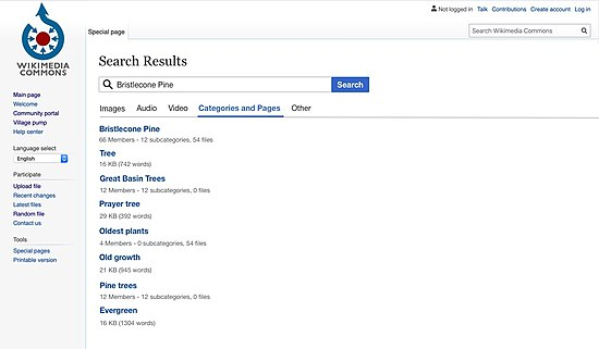 Media search categories and pages tab.jpg