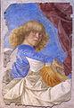 Melozzo da forlì, angeli musicanti, 1480 ca., da ss. apostoli, 06.JPG