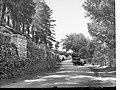 Memorial Drive Mount Gambier(GN08467).jpg