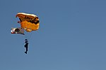 Military Parachute Teams' performance 141004-M-JD595-426.jpg