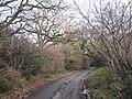 Mill Pool Lane B93 - geograph.org.uk - 2191163.jpg