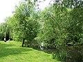 Mill Stream, Alrewas - geograph.org.uk - 446002.jpg