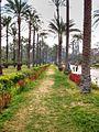 Montaza Palace garden.jpg
