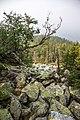 Moskal ridge (28270942910).jpg