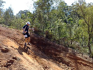 Mountain running - A fase of a mountain running race.