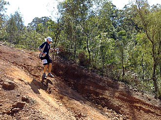 Mountain running - A phase of a mountain running race.