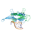 Ms2 abdimer rna sideview.png