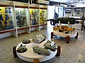 Museu Marítimo e da Imigração P1090873 (5149259078).jpg