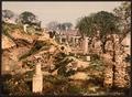 Museum garden, II, Carthage, Tunisia-LCCN2001699370.tif