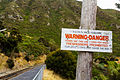 NZ110315 Taieri Gorge Railway 04.jpg