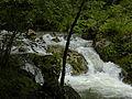 Naturpark Ötscher-Tormäuer - Trefflingbach im Übergang zum Trefflingfall.jpg