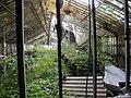 Neglected Greenhouse - panoramio - dans362.jpg