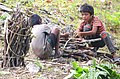 Nepali Child in forest for wood jungle.jpg