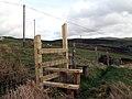 New Stile - geograph.org.uk - 359320.jpg