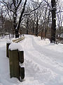 New York. Central Park. Snowy (2797298019).jpg